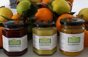 home-made-jam-honey